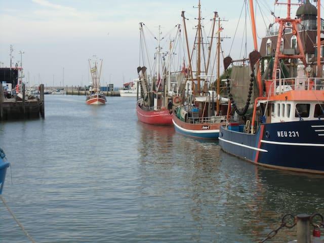 Fischerboote im Hafen von Neuharlingersiel.