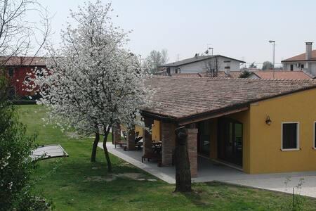 Particolari del Brenta - Apt Chiara near Venice - Oriago di Mira