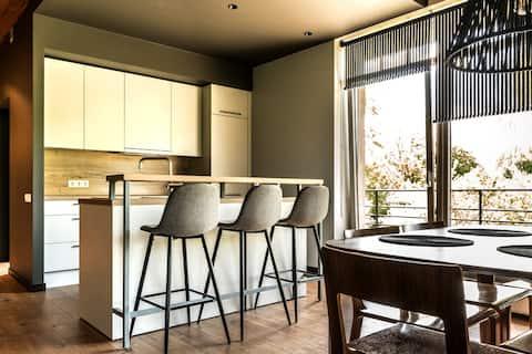 Luxury apartment on Šveices street