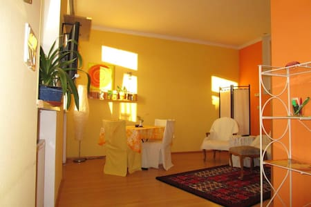Sunny Apartment near at the City Center - Baden bei Wien - Apartamento