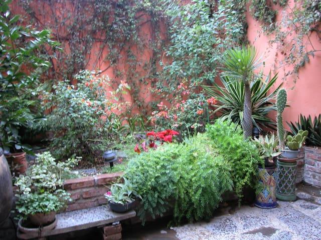 Cozy room in cool centro home  - San Miguel de Allende - Bed & Breakfast