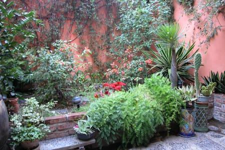 Cozy room in cool centro home  - San Miguel de Allende