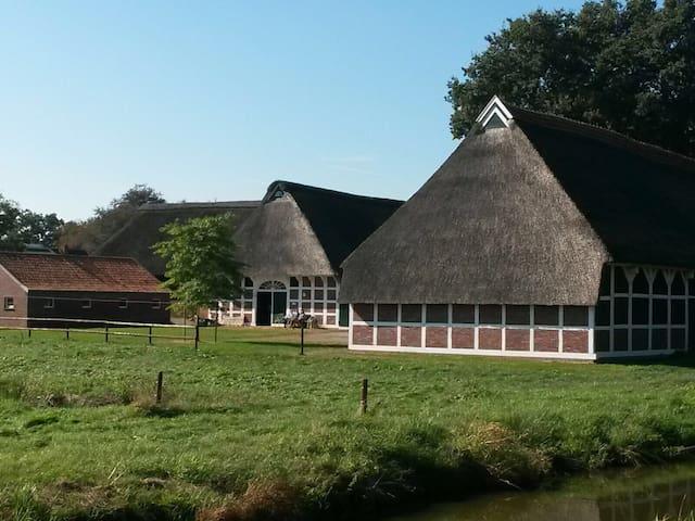 Reetdachanwesen - Urlaub in der Wesermarsch - Elsfleth - Hus