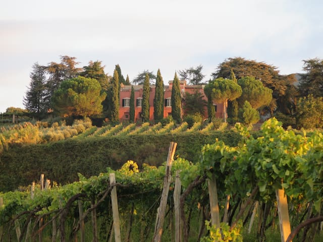 Rome Villa, Vineyards, Olive Groves w Bkfst & Help - Monte Porzio Catone - Willa
