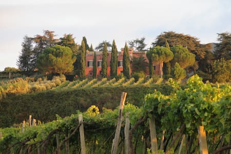 Historic Villa, Vineyards, Olive Groves Near Rome - Monte Porzio Catone