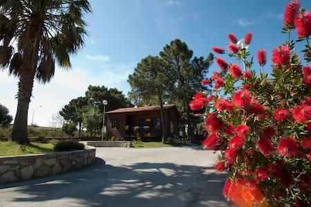 Sea Villa Nocera Terinese Calabria - Nocera Terinese