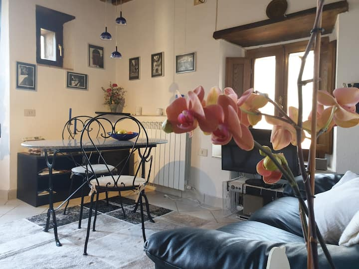 Cozy Apartment Studio Siena Tuscany