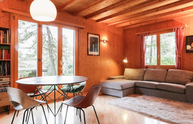Family chalet at the foot of Jura - Chéserex - Chalet
