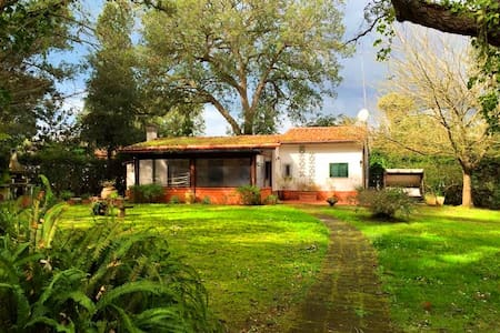 Cottage with fireplace in private park - Selva Piana-baia D'argento