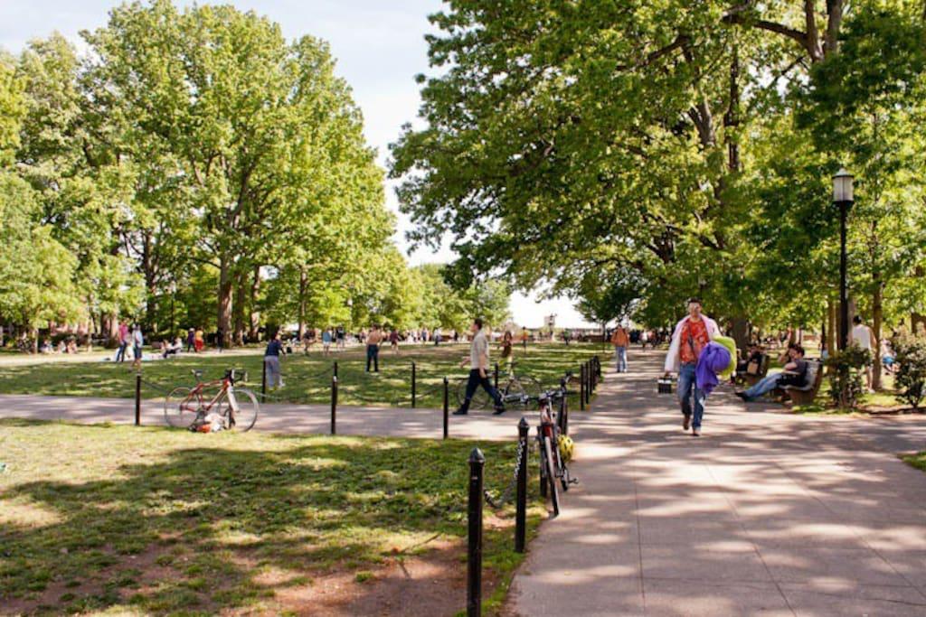 Meridian Hill Park, right across the street