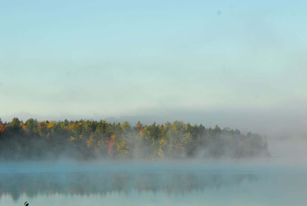 This morning mist begs for a coffee some knitting or a good book.