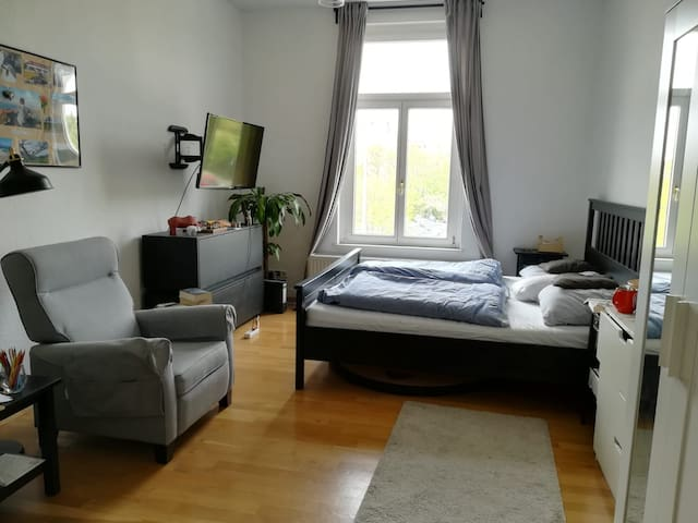 160m² Wohnung mit top Lage im Leipziger Zentrum