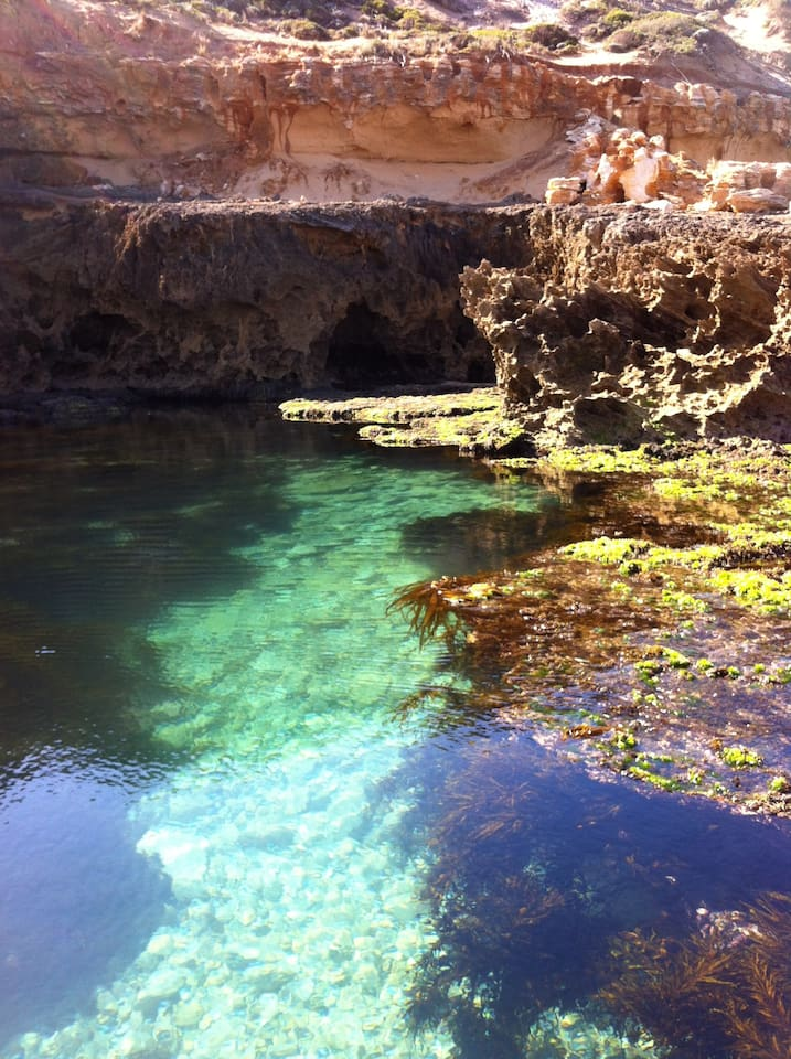 so many great rock pools to explore at low tide