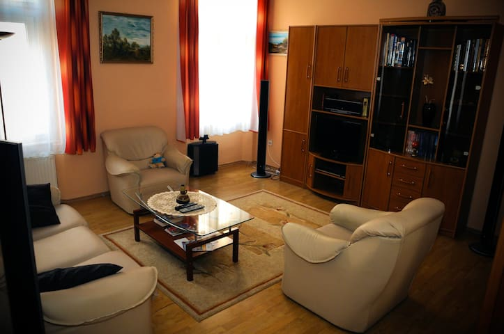 Flat in the heart of downtown - Szeged - Leilighet