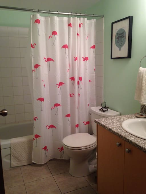 Flamingo bathroom equipped with hairdryer + straightener!