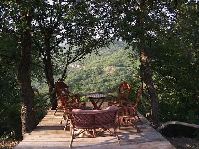 Villa Hrabri Vuk 2 - Budva - Casa