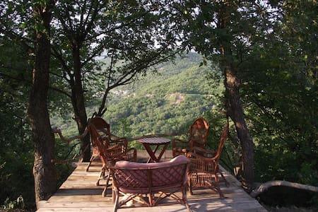Villa Hrabri Vuk 2 - Budva