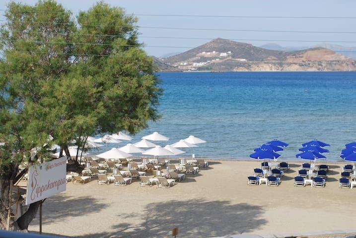 Ippokampos Beachfront - Νάξος - Oda + Kahvaltı