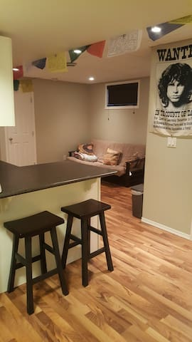 basement suite close to downtown and idylwild - Saskatoon - House
