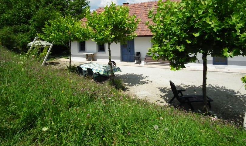 Ferienhaus Paulusberg