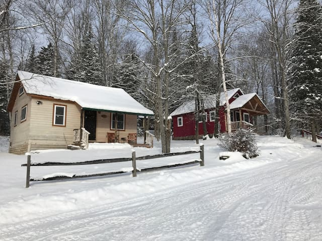 Twin Cabins on 230 Acres w/ Trails and Lake