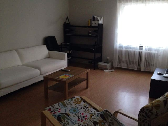 Nice, clean and comfortable cosy studio in Timrå - Timrå - アパート