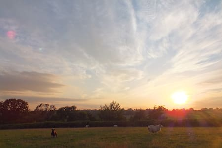 Glamping at Egypt House Farm (3)