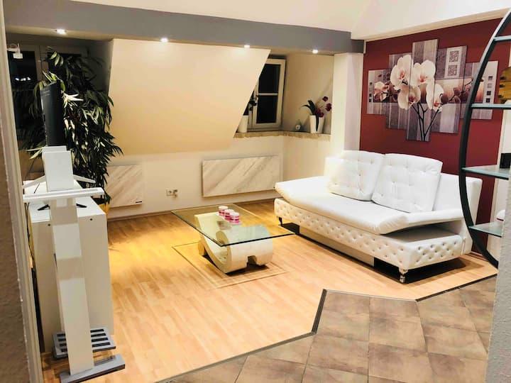Sonnige Wohnung Nähe Zentrum/Messe +Klimaanlage