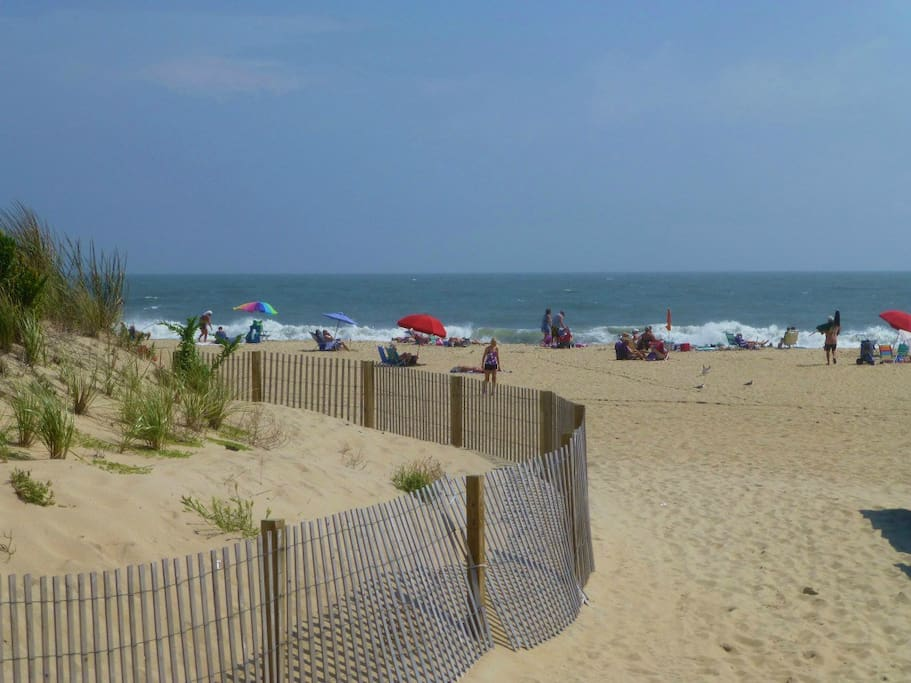 ocean city big and beautiful singles Condo rentals and vacation rentals in ocean city, md search easy walk to beach and boardwalk grills and picnic tables out back big screen tvs off street parking.