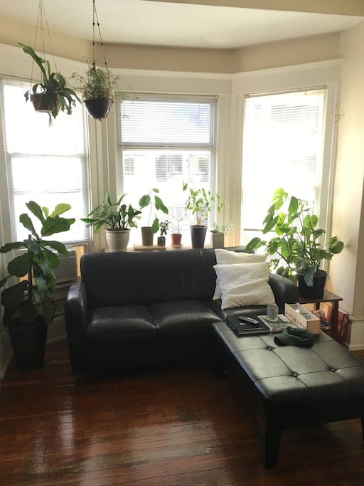 Great location in downtown seattle apartments for rent for Seattle view apartments