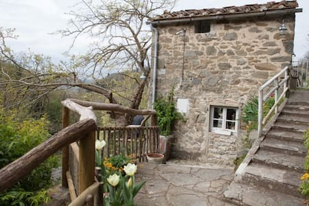 Il Rosmarino - Pelago - Bed & Breakfast