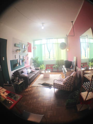 Quiet room with amazing view
