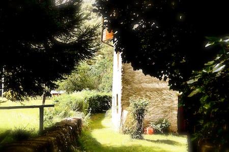 Completo Relax a Villa Rosanna - Isola