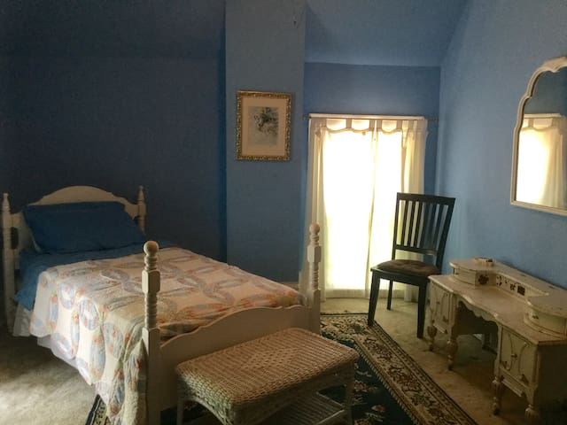 Cozy Blue Room with Twin Bed near Downtown