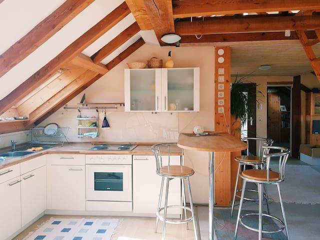 Wunderschönes Design Appartment vor Frankfurt