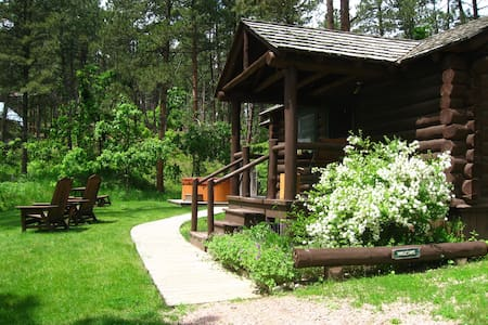 The Willows Cabin, a woodland retreat