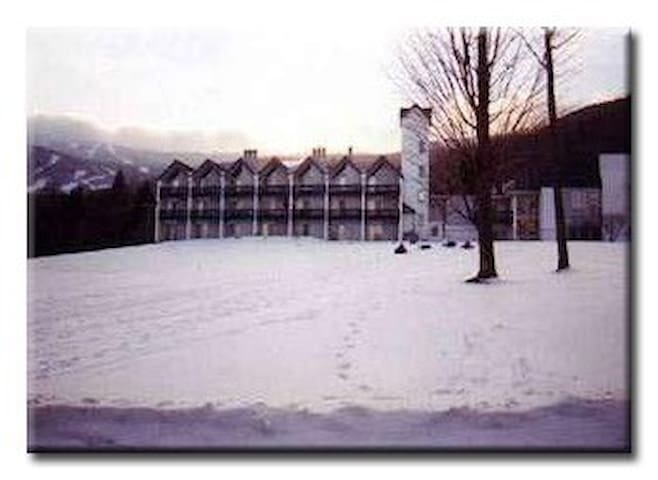 Slope side condo at sugarbush ! - Waitsfield - Leilighet