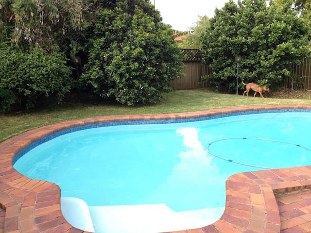 Pool & backyard, comfy house, beautiful quiet area - Hamilton South - Huis