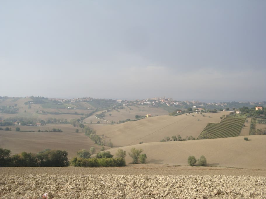 The view over Le Marche hills