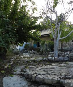 150 year old house in Kritou Tera - Kritou Tera - Rumah