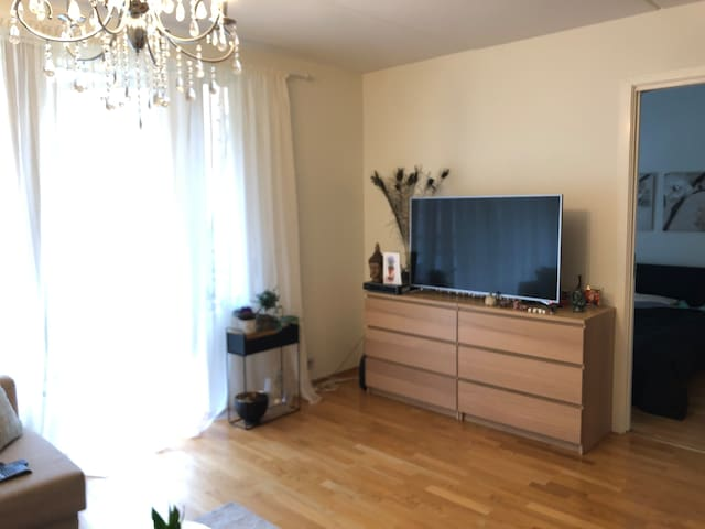One bedroom apartment in Skøyen, central location