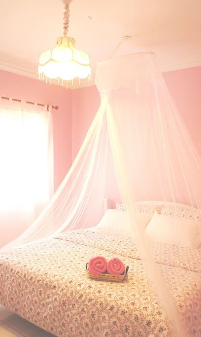 Romantic princess master bedroom (bathroom attached)