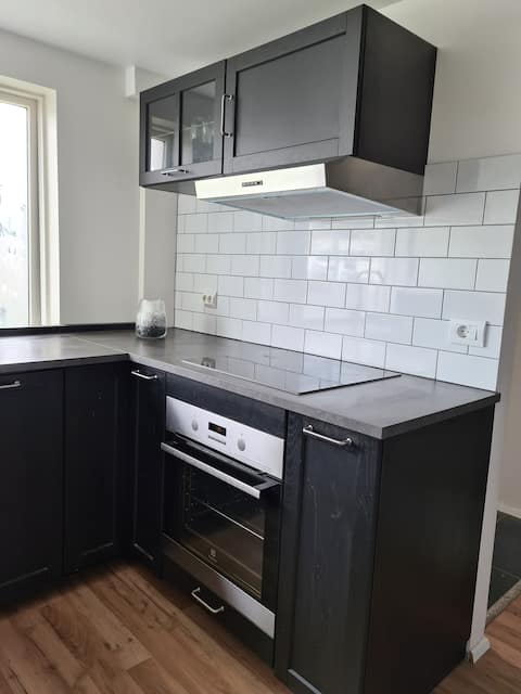 Nice newly renovated apartment in Reykjavik