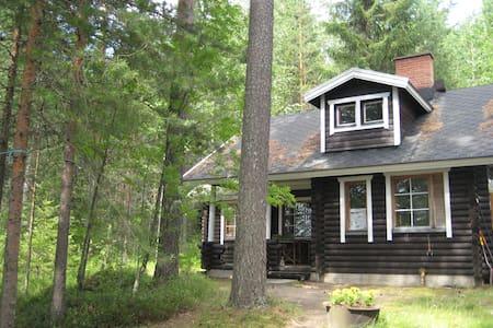Nice summerhouses near the lake - Viitasaari - Villa