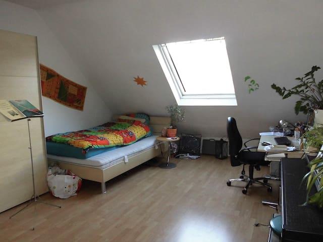 quiet & central living in Wiesbad - Wiesbaden - Wohnung