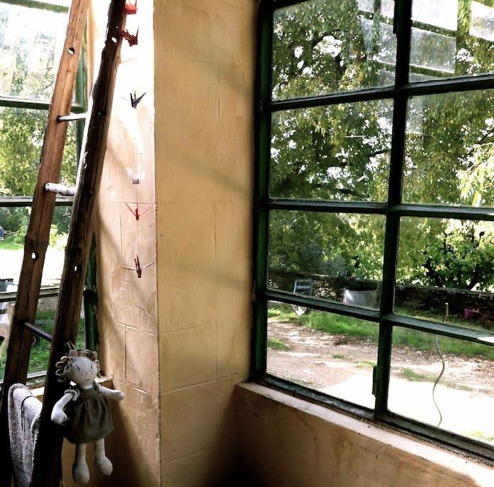 la veranda au pied des arbres