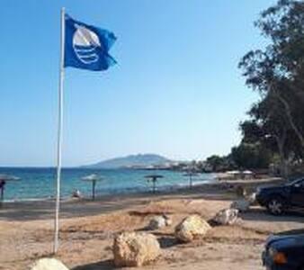 Spacious villa 10 min. to ATH airport, Rafina port