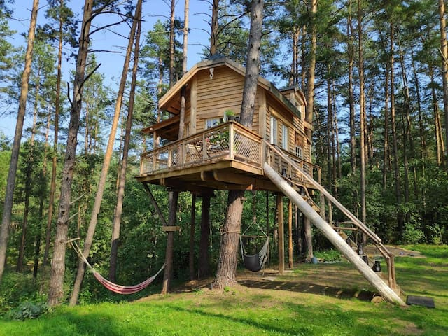 Tree house moletai