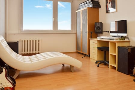 Nice, calm flat with 2 rooms, kitchen and bathroom - Plzeň - Daire