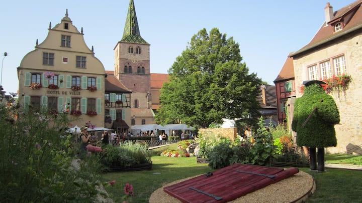 Bel appartement 45m² centre historique Turckheim